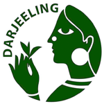 Teekampagne Logo Gründungen aus dem eigenen Umfeld