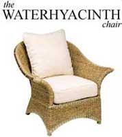 logo Waterhyacinth Gründungen aus dem eigenen Umfeld